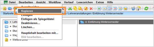 Kopieren Einfügen Service Für Lmu Webauftritte Lmu München